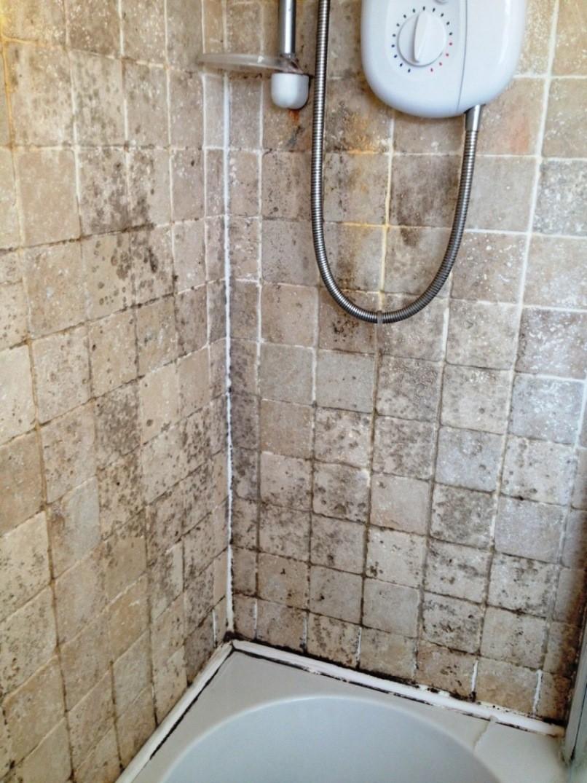Плесень в ванной - основные причины возникновения и эффективные методы устранения (85 фото)